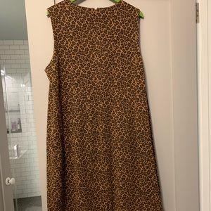 Lands' End Dresses - Fantastic Lands End Leopard Shift Dress